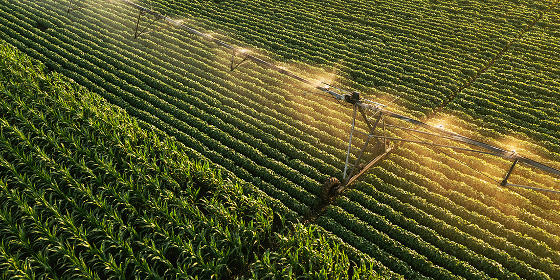 aerial view of irrigation equipment watering
