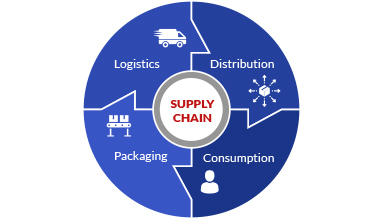 Embrace ERP Supply Chain Management Cycle Graph